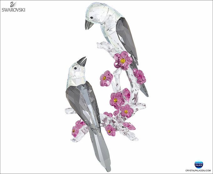 (SOLD OUT)  Loving Magpies