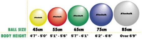 Thera band exercise balls 45 55 65 75 cm pro series fitness ball