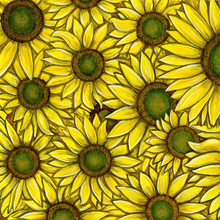 Country Sunflowers - PRINT