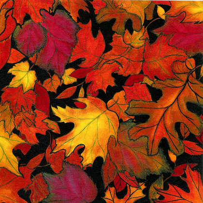 Fall Colors - Print