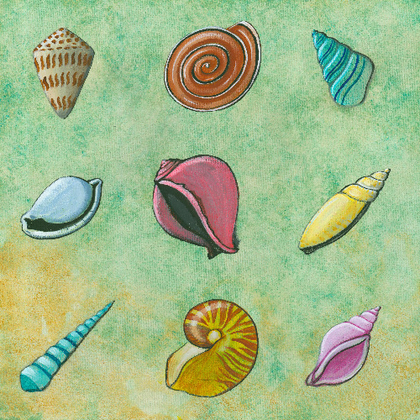 Seashell Collage Cut-Outs