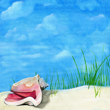 Seashell Treasure