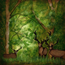 Woodlands Deer - Print