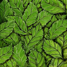 Woodlands Foliage - Print