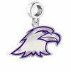 Ashland Eagles Silver Logo and School Color Drop Charm