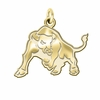 Buffalo Bulls 14K Yellow Gold Natural Finish Cut Out Logo Charm