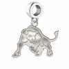 Buffalo Bulls Dangle Charm