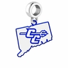Central Connecticut Blue Devils Logo Dangle Charm