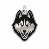 Connecticut Huskies Silver Charm