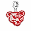 Cornell Big Red Silver Logo and School Color Drop Charm