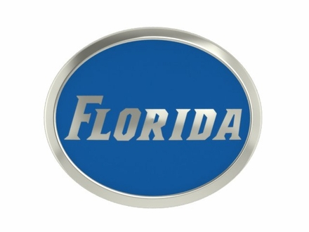 Florida Gators Enamel Bead