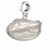 Florida Gators Dangle Charm