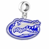 Florida Gators Silver Logo and School Color Drop Charm
