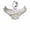 Hartford Hawks Dangle Charm