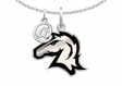 @HillsdaleChargers Necklace