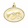 Iowa Hawkeyes 14K Yellow Gold Natural Finish Cut Out Logo Charm