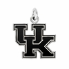 Kentucky Wildcats Silver Charm
