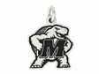 Maryland Terrapins Silver Charm