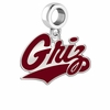 Montana Grizzlies Silver Logo and School Color Drop Charm
