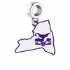 New York Violets Logo Dangle Charm