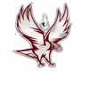 North Carolina Central Eagles Logo Charm