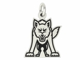 South Dakota Coyotes Silver Charm