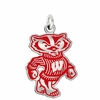 Wisconsin Badgers Logo Charm
