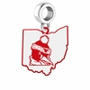 Youngstown State Penguins Logo Dangle Charm