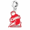Youngstown State Penguins Silver Logo and School Color Drop Charm