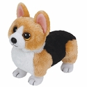 Otis the Welsh Corgi Dog (Regular Size) - TY Beanie Baby
