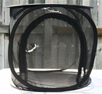 """Butterfly Popup Cage without Vinyl Window Black 12""""x12""""x12"""""""