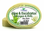 Aloe & Eucalyptus - All-In-One - Complexion - Shampoo - and Body Bar
