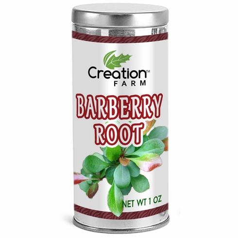 Barberry Root 1oz