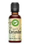 Coriander Essential Oil 30ml (1oz)