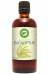 Eucalyputs Essential Oil  4.0 oz (120 ml)