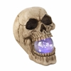 Skull With Light-Up Orb