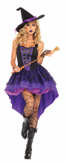 BROOMSTICK BABE ADULT COSTUME