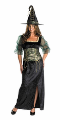 EMERALD WITCH PLUS SIZE ADULT COSTUME