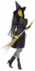 MS. WICKED WITCH ADULT COSTUME