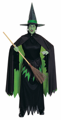 WICKED WITCH ADULT COSTUME