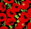 50 Red Poppy Flower Seeds poppies Ships FREE