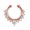 Alloy Nose Hoop Nose Rings Body Piercing Jewelry