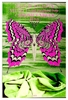 Iron Butterfly Concert Poster