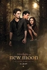 New Moon Twilight Saga 2009 Poster