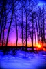 WINTER SUNSET Art Print - FREE Shipping