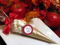 Bridal Shower Apple Cider Cone Favors