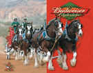 Budweiser - Clydesdales Tin Signs