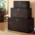 Brown Wood Storage Trunk