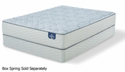 Alverson Firm Mattress