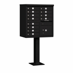 Salsbury Cluster Box Unit (Includes Pedestal) - 12 A Size Doors - Type II - USPS Access - Black